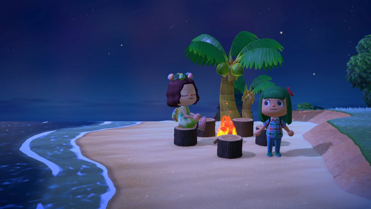 保护动物 screencap showing characters on a tropical beach by a palm tree